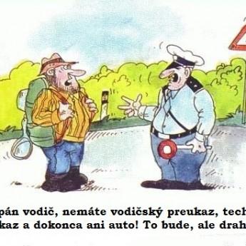 Policajná logika