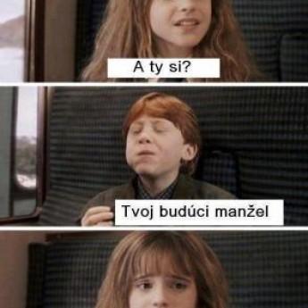 Hermiona a Ron