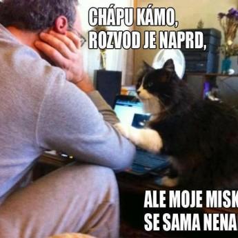 Empatická mačka :D