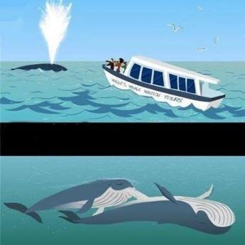 Vieme prečo je more slané :D