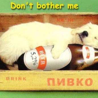 Havo s pivom