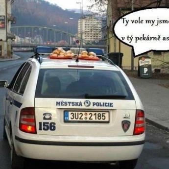 Policajti a šišky