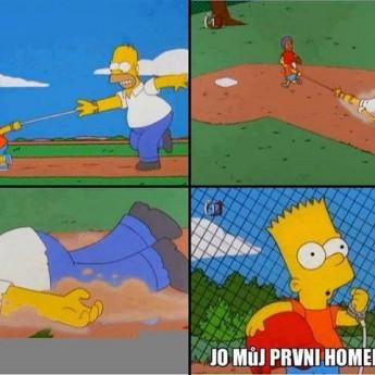 Homerrun :D