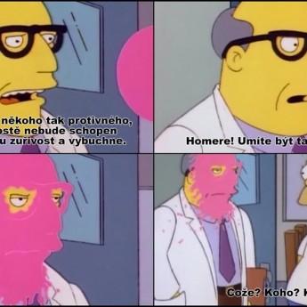Protivný Homer