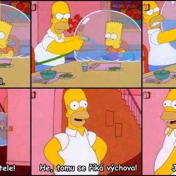 Homerova výchova