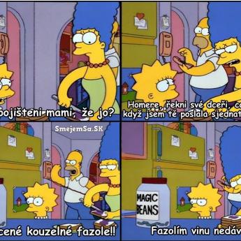 Homer vybavoval poistku