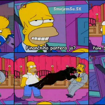 Homer a finančný poradca