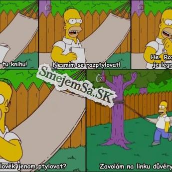 Homer číta knihu
