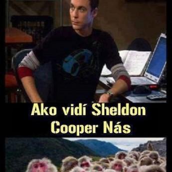 Sheldon vs. ostatní