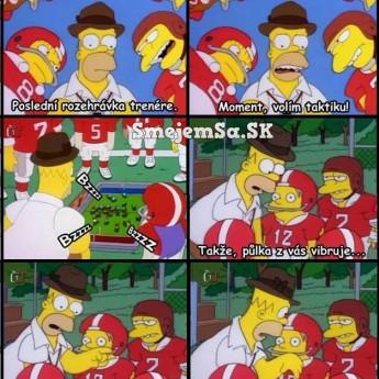 Homer volí stratégiu