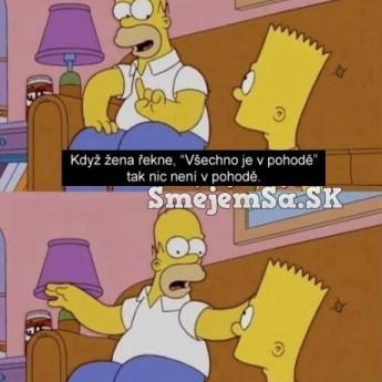 Homer vysvetľuje ženskú logiku