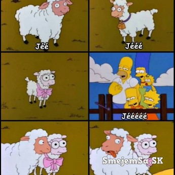 Homer a ovečky