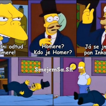 Pán Inkognito a Homer