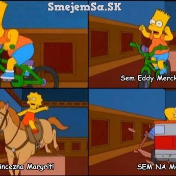 Homer na mol