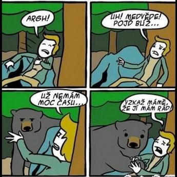 Pozor medveď!