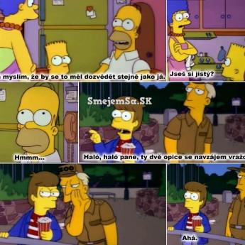 Ako sa Homer dozvedel o tom … :D