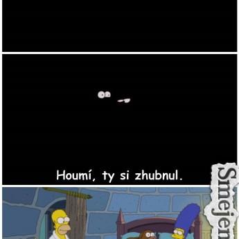 Homer, schudol si?