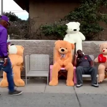THE TEDDY BEAR SCARE thumbnail