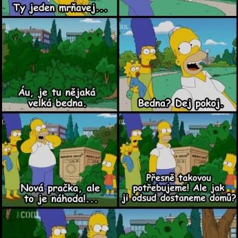 Homerove prekvapenie v kríku