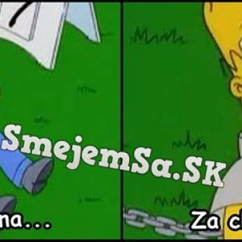 Homer si mizne pred očami