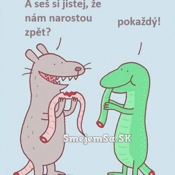 Chvost potkana a jašterice