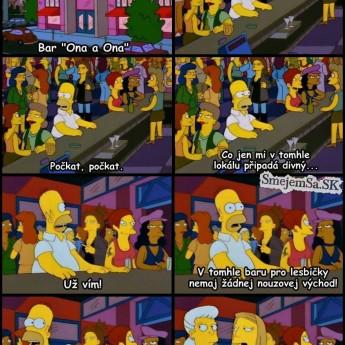 Homer v lesbickom bare