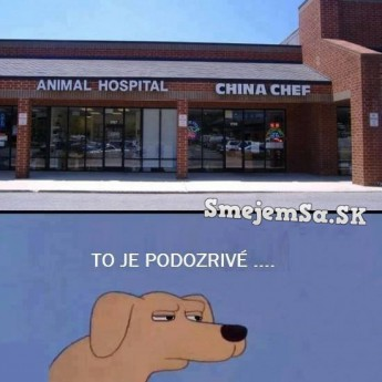 Nemocnica pre zvieratá vedľa čínskej reštaurácie