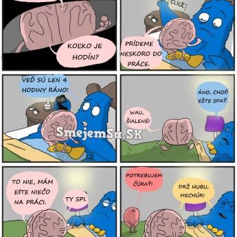 Keď Vám mozog nedá spať…