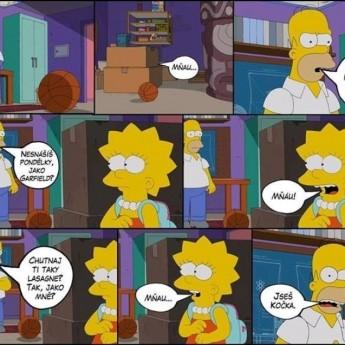 Homer a mačka