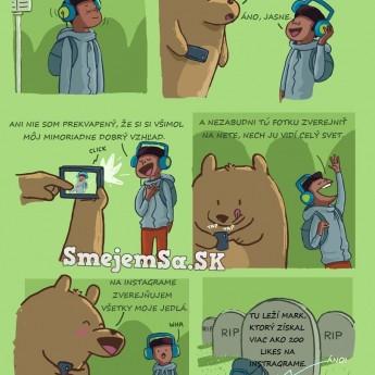 Medveď fotí…