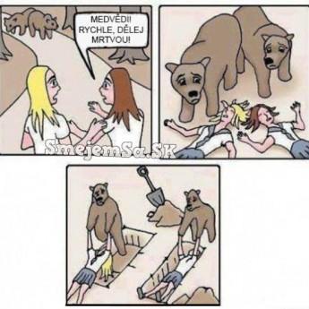 Pozor, medvede!