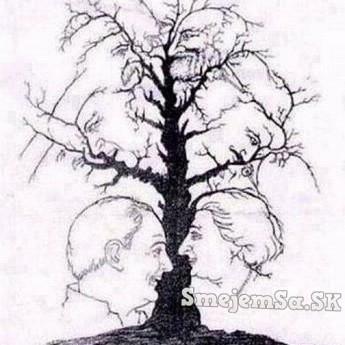 Koľko vidíš tvárí?