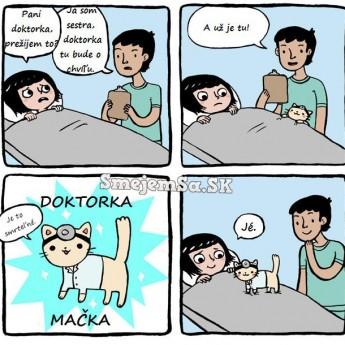 Doktorka mačka