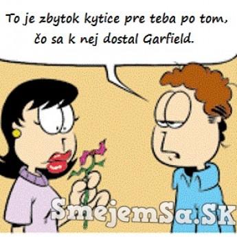 Garfield zje všetko