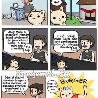 Burger mačka