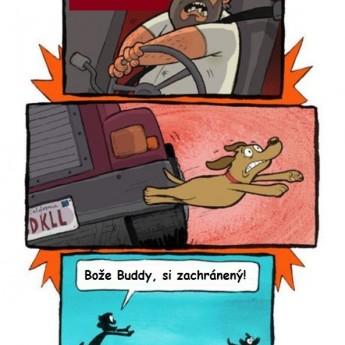 Zachránený Buddy