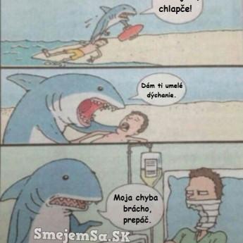Plavčík žralok