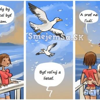 Aké je to byť vtákom