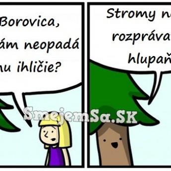 Pani Borovica