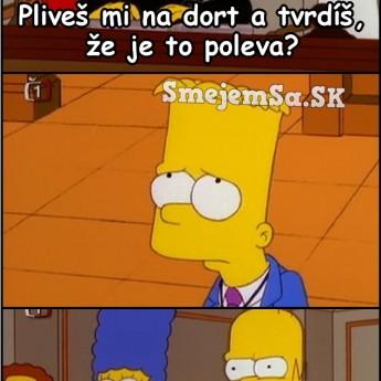 Homer a torty