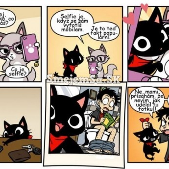 Selfie mačky