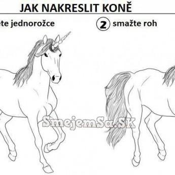 Ako nakresliť koňa