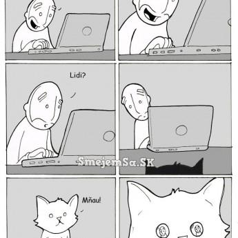 Neumierajte pri mačke