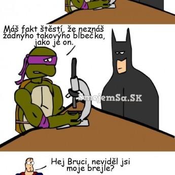 Ninja korytnačky, Batman a Superman