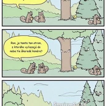 Provokujúce veveričky