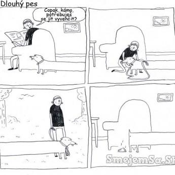 Dlhý pes