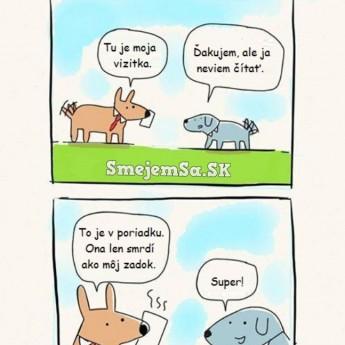 Pes podnikateľ