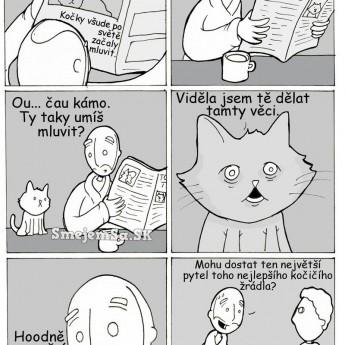 Keby mačky vedeli rozprávať…