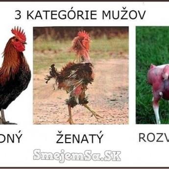 3 kategórie mužov