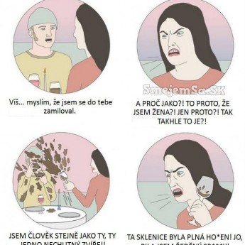 Pozor, feministka!